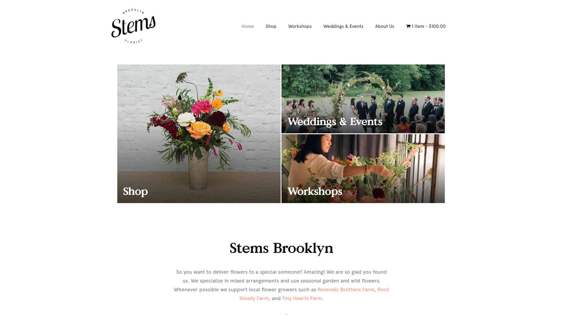 screenshot-www.stemsbrooklyn