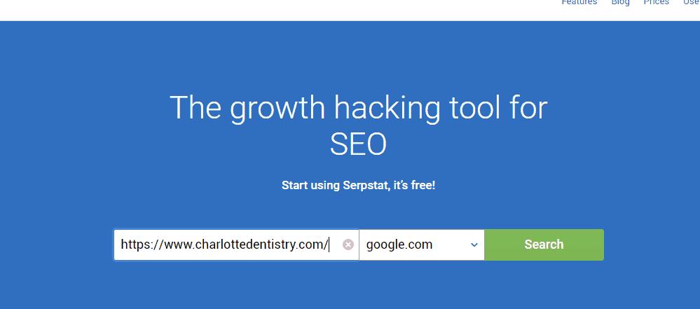 Serp Stat search